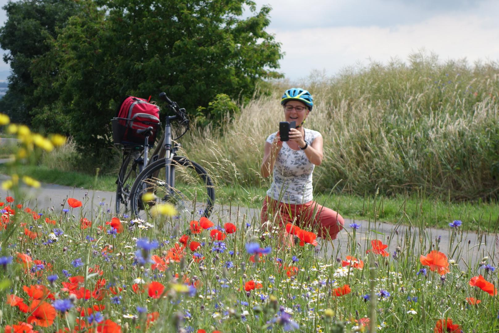 Radfahrerin fotografiert Blumenwiese